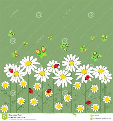 imagens de flores e rosas flores e borboletas em seguido imagens de stock imagem
