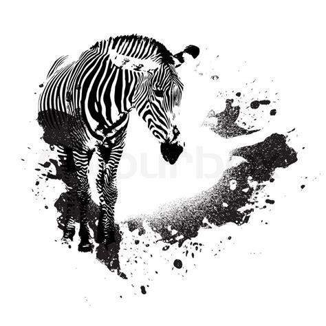 black and white zebra ls zebra in schwarz und wei 223 mit splatted farbe akzente