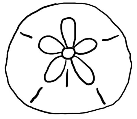 coloring page sand dollar sand dollar clip art clipartion com