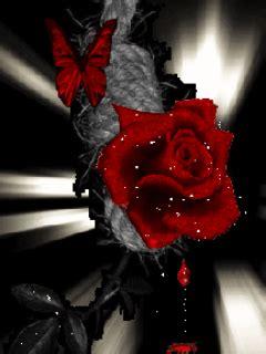 imagenes goticas brillantes rosa brillante con mariposa 937457 im 225 genes bellas