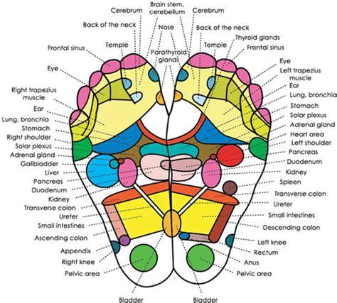 Https Www Globalhealingcenter Cleansing Detox Foot Pads Html by Detox Foot Pads 100 Organic