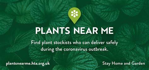 find plant deliveries   plants   hort news
