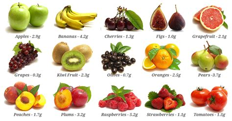 fruit with fiber sources of dietary fibre weight loss resources