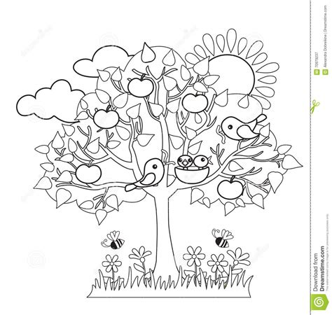 coloring pages of spring trees spring tree birds build nests seasonal signs of spring