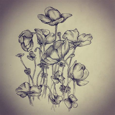 tattoo flower drawn poppies poppy flower tattoo sketch by ranz pinterest