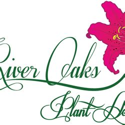 river oaks plant house river oaks plant house 11 fotos 10 beitr 228 ge blumenladen florist 6103 kirby