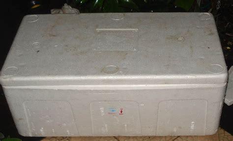 Box Ikan Styrofoam sedia berbagai benih ikan air tawar pengiriman seluruh