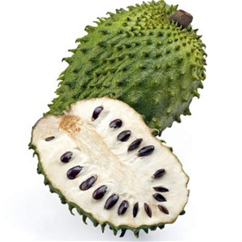 g fruit guanabana the best place to buy soursop graviola