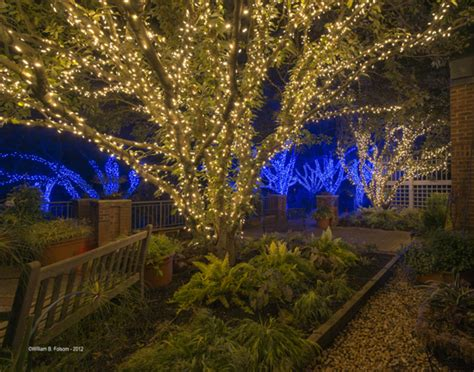 meadowlark botanical gardens meadowlark s winter walk of lights meadowlark s winter walk of lights virginia is for