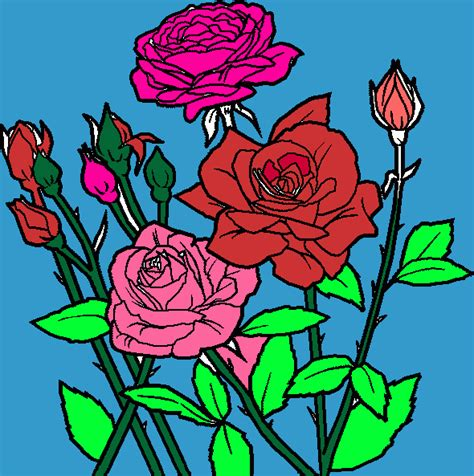 imagenes de flores rojas para dibujar rosas rojas para colorear rosas rojas para imprimir