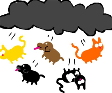it s raining cats and dogs its raining cats and dogs