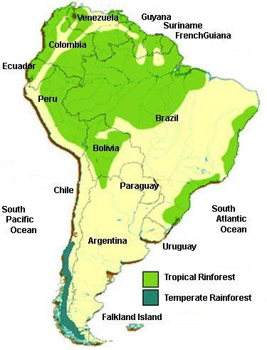 amazon america amazon rainforest south america oh the places you ll