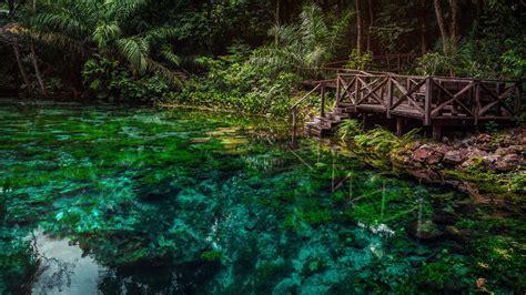 amazon brazil explore northern brazil amazon in brazil south america
