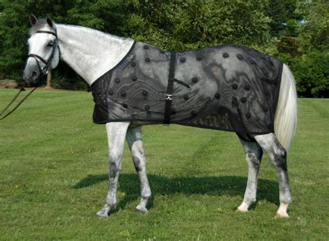 Horses Blankets For Sale by Benefab Ceramic Products Magnetic Blankets
