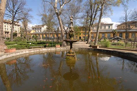 giardino dei semplici firenze orto botanico giardino dei semplici dell universit 224 di