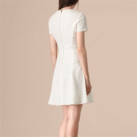 Dress Lace Greiny lace a line dress burberry