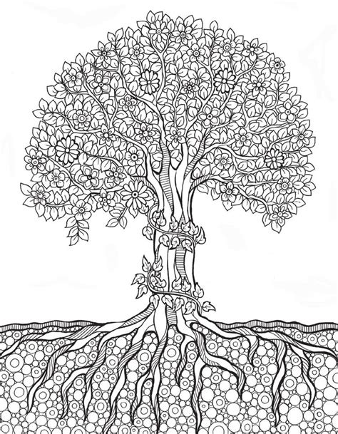 coloring page of tree with roots 511 best tree art coloring pages images on pinterest