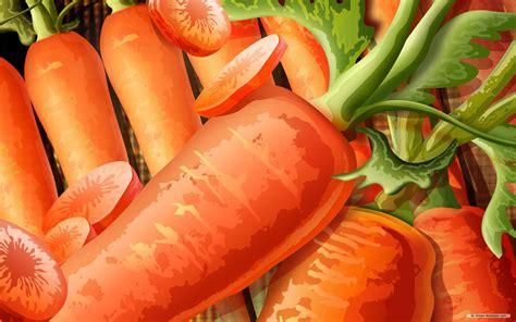 wallpaper colorful food food illustrations wallpaper 248207