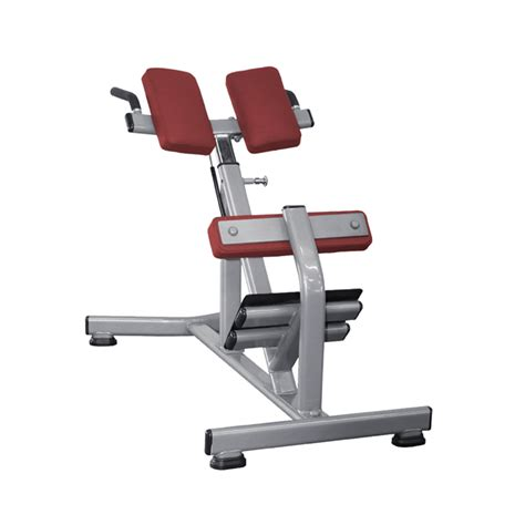 lower back bench lower back bench fw 1006