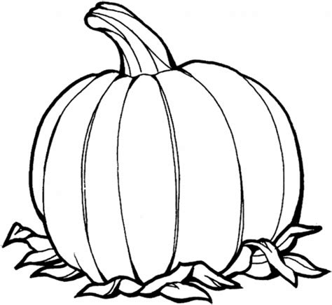 pumpkin coloring pages coloring lab
