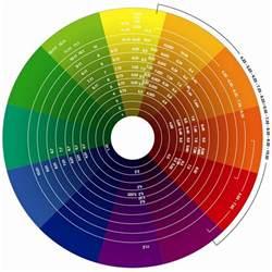 html color wheel the wondrous evoluscope taxonomy colour wheel