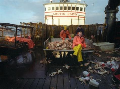 alaska fishing boat captain saves crewmen 17 mejores ideas sobre opilio crab en pinterest