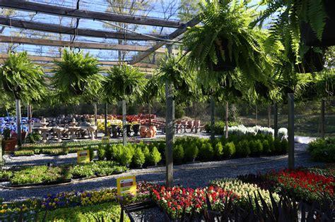home country boys home garden center