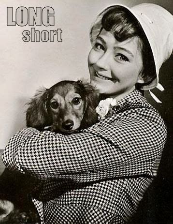 The Long and Short of it All: A Dachshund Dog News ...
