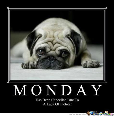 Monday Meme Images - monday has been cancelled pictures photos and images for
