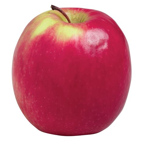 Apple For S pink apples also known as cripps pink apple buy buyfruit au