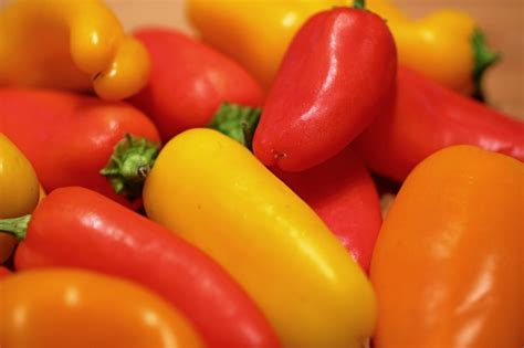 stuffed mini sweet peppers easy recipes for hungry