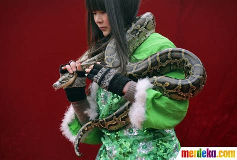 rekomendasi film ular foto atraksi berbahaya sambut tahun ular di china