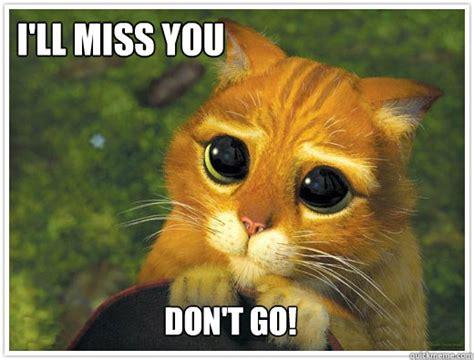 I Will Miss You Meme - i ll miss you don t go shrek cat quickmeme