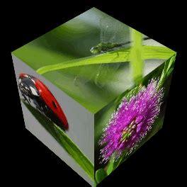 lunapic   photo editor rotating cube