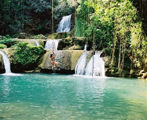 swinging the pond and back again steamy adventures midnight books jamaica ropeswing waterfall nature beautiful water