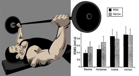 bench press for mass gain chest mass and boost your bench press fitness workouts exercises