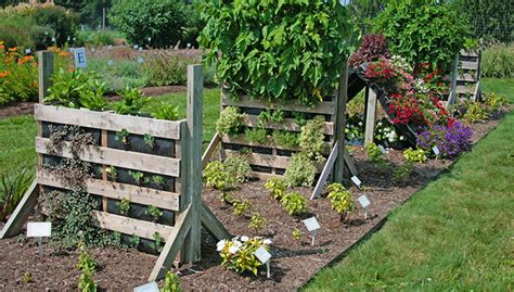 Gardening For Small Spaces - wood pallet garden ideas hawkes bay espaso verde