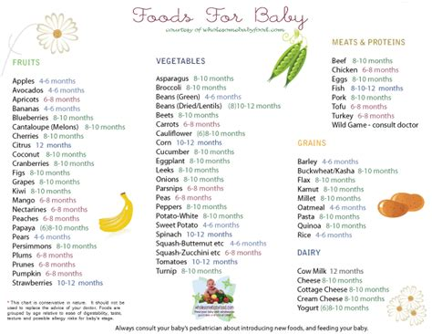 When Do Babies Start Table Food by Solid Food Chart By Types Of Foods Apples Broccoli And
