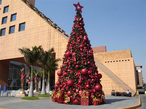 pool city christmas trees the 10 best boutiques in mexico city for shopping