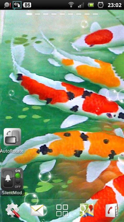wallpaper bergerak koi pin ikan koi wallpaper on pinterest