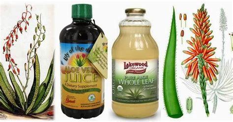 Aloe Vera Detox Side Effects by Ottawa Valley Whisperer Aloe Vera Juice Herbs For
