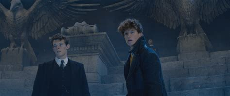 fantastic beast fantastic beasts 2 callum turner on playing newt s