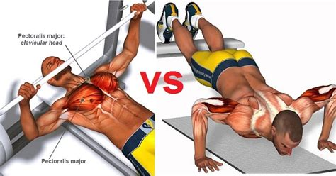 bench press or push ups bench presses or push ups which is more effective all