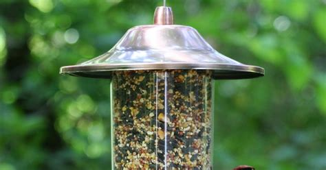 copper made anti squirrel bird feeder squirrel proof