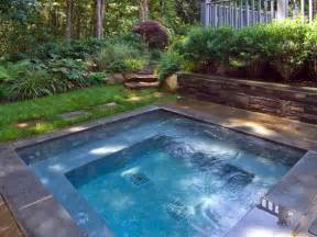 Backyard Pools Spas 19 Swimming Pool Ideas For A Small Backyard Homesthetics