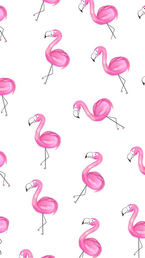 flamingo wallpaper on love it or list it 40 best fancy flamingos iphone wallpapers images on