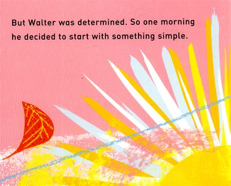 walters wonderful web 1447277104 walter s wonderful web a book about shapes by hopgood tim 9781447277101 brownsbfs