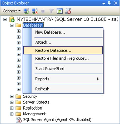 sql learn sql in 2 hours and start programming today books restoring from sql server 2005 backup to a new db on 2008 r2