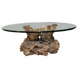 root coffee table cypress root coffee table at 1stdibs