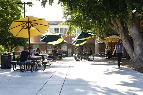 Woodbury College Mba by Transfer Students Woodbury